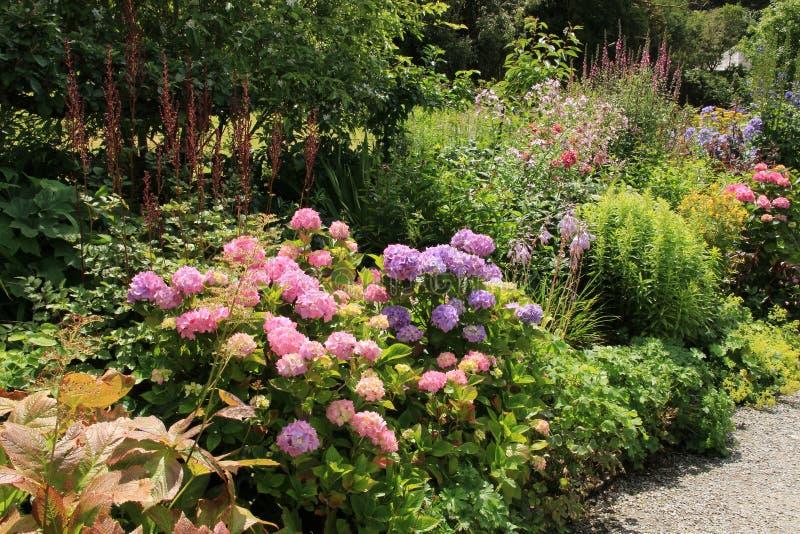 在Garinish海岛上的村庄庭院在爱尔兰在夏天 库存照片