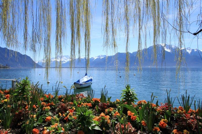 在Geneva湖,蒙特勒,瑞士的春天 免版税图库摄影
