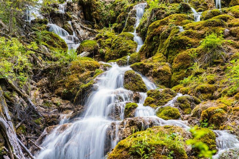 在Glenwood峡谷,科罗拉多的洪流 免版税库存图片