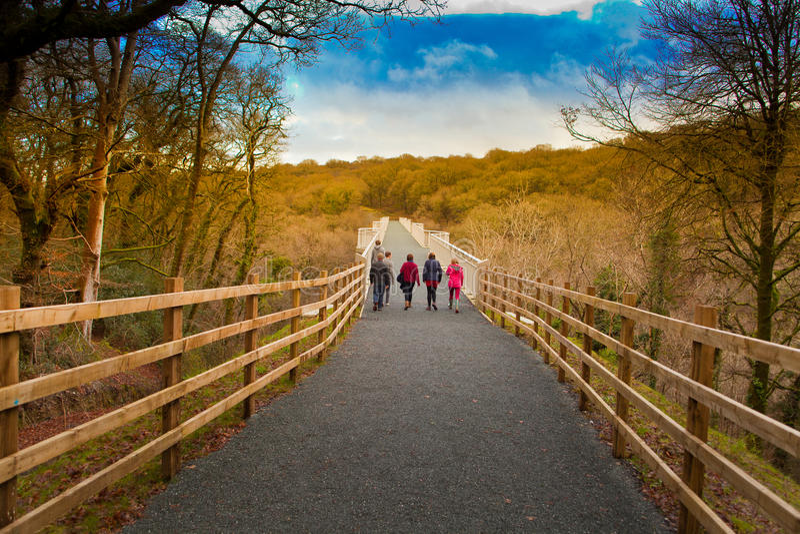 在Grenofen 200米长的周期的宝石桥梁和横跨Walkham谷的步行桥在Tavistock,德文郡, UkUK附近 免版税图库摄影