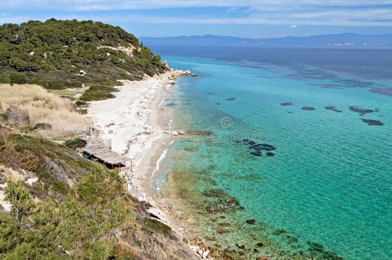 在Halkidiki,希腊的晴朗的海滩 免版税库存照片