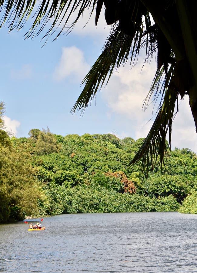 在Hanalei河,考艾岛,夏威夷,美国的Watersports 库存图片
