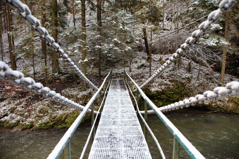 在Hornad河的斯诺伊铁锁式桥梁在斯洛伐克天堂Nati 免版税图库摄影