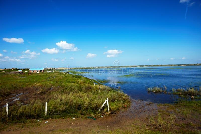在hulunbeier津贴草原的夏天洪水2013年 免版税库存照片