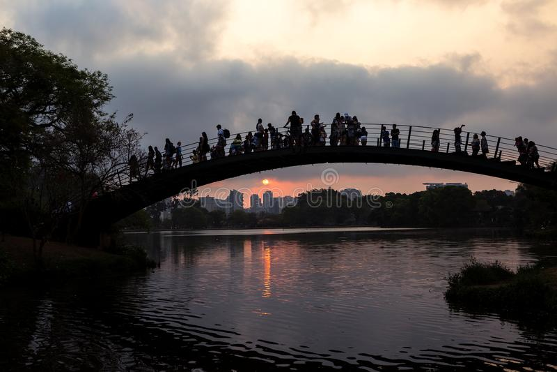 在Ibirapuera湖的桥梁 免版税库存图片