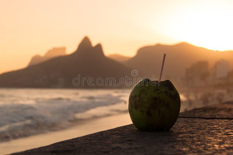 Download 在Ipanema海滩的椰子饮料由日落 库存图片. 图片 包括有 面包渣, 椰树, 海洋, 温暖, 城市, janeiro - 59103717