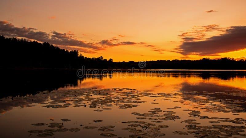 在Island湖Orangeville的日出之前 免版税库存图片