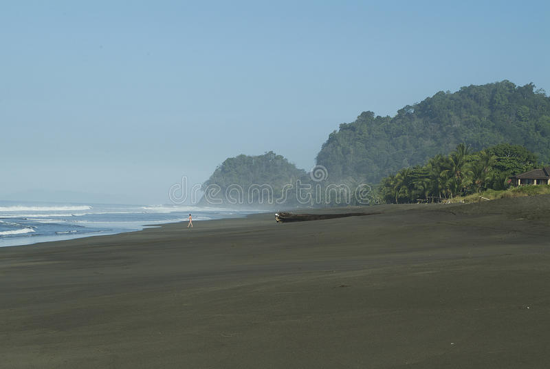 走在一个哥斯大黎加的海滩的妇女 免版税库存图片