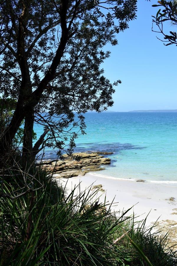 在Jervis海湾,新南威尔斯,澳大利亚的美丽的海滩 库存照片