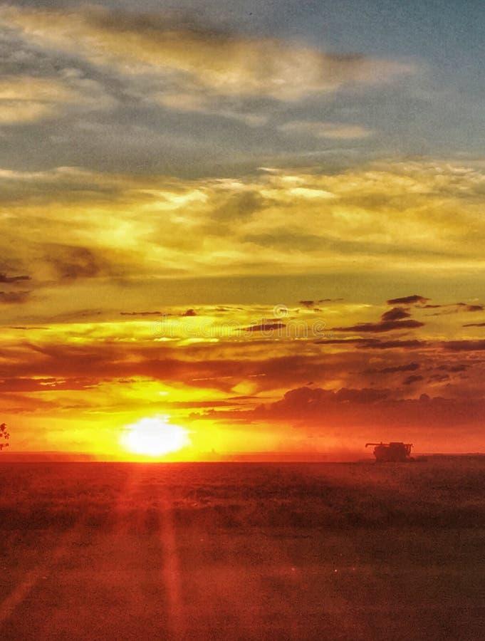 在Jimbour澳大利亚的日落 免版税库存照片