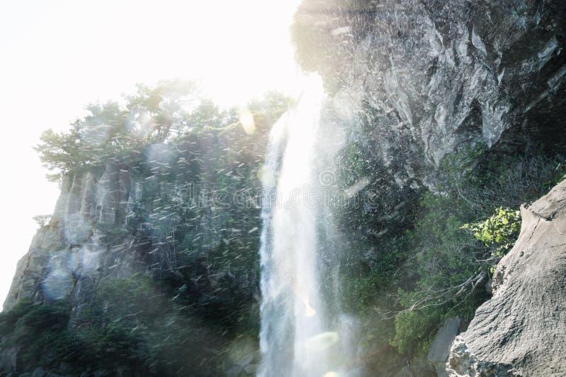 在Joengbang瀑布下在西归浦,济州海岛,韩国 免版税库存照片