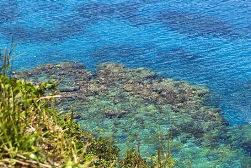 在Jokin峭壁的珊瑚礁  免版税库存照片