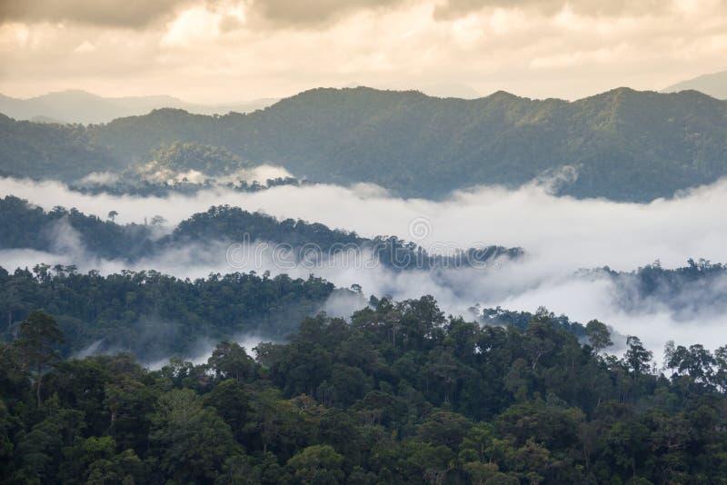 在Kaeng Krachan国家公园的美丽的海雾在泰国 免版税库存照片