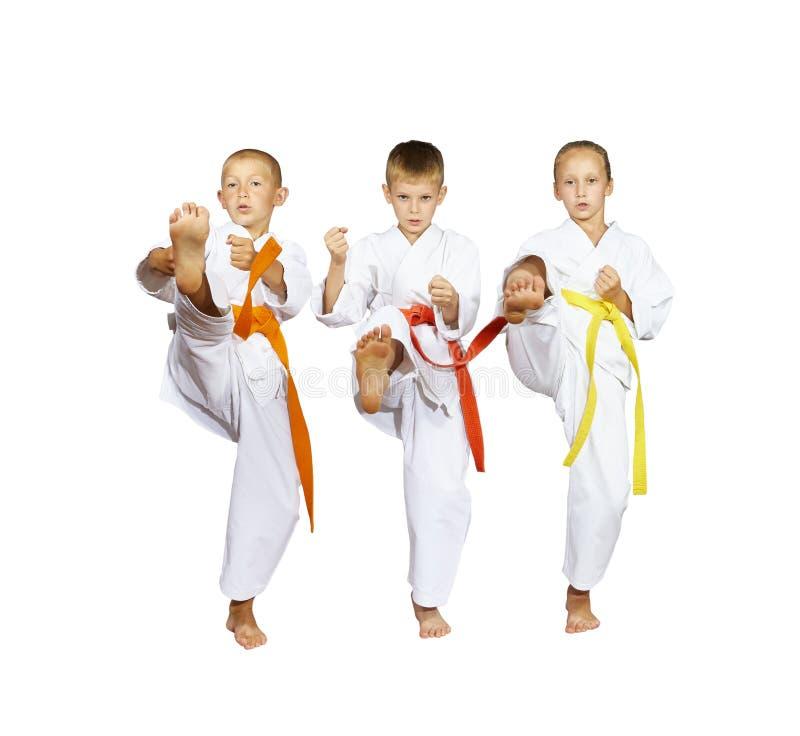 在karategi的Sportsmens打反撞力mae-geri 免版税库存图片
