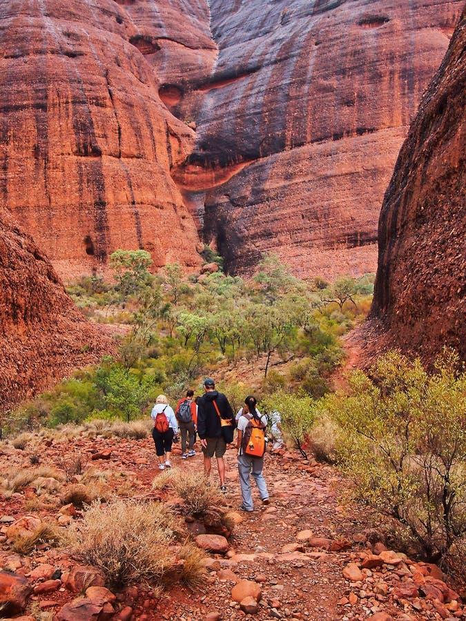 在Kata Tjuta红色岩石峡谷的步行,北方领土,澳大利亚 库存图片