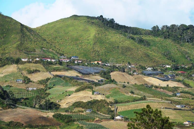 在Kinabalu山附近的农业谷 免版税库存图片