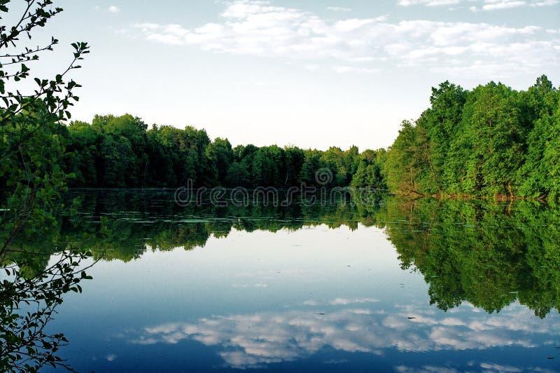 在Klyazma河的洪泛区 图库摄影