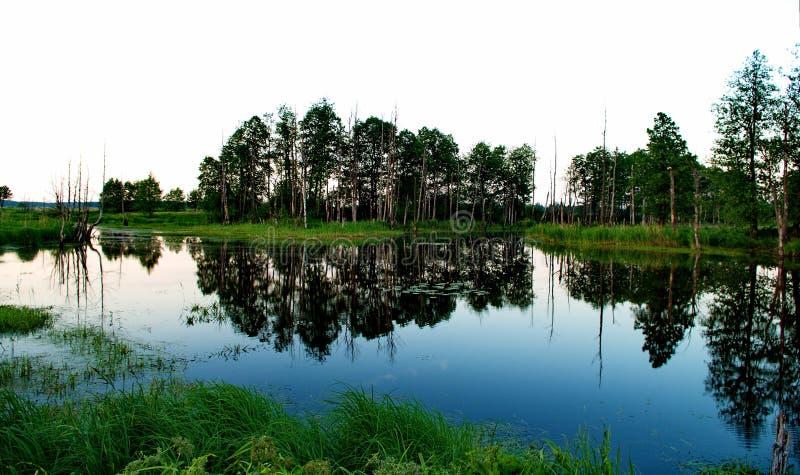 在Klyazma河的洪泛区 免版税库存照片