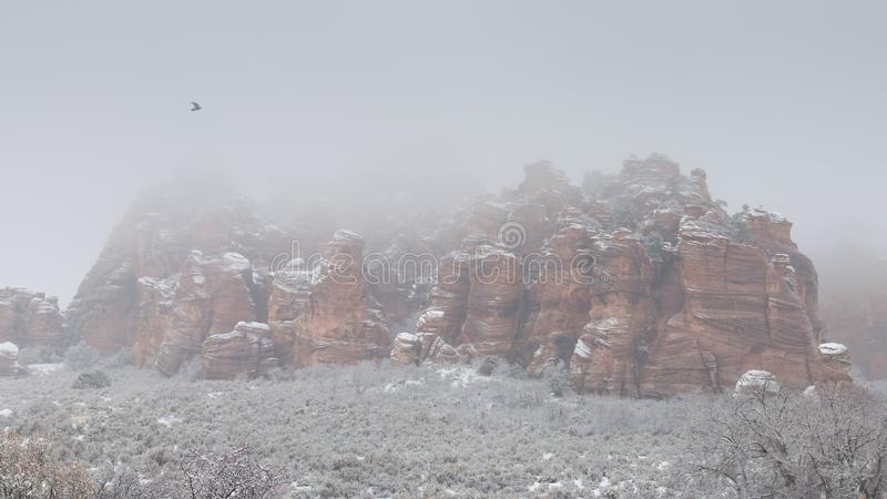 在Kolob山的埃文利谷在南犹他在与飞行在岩石的掠夺的一个多雪的有雾的冬日 免版税库存照片