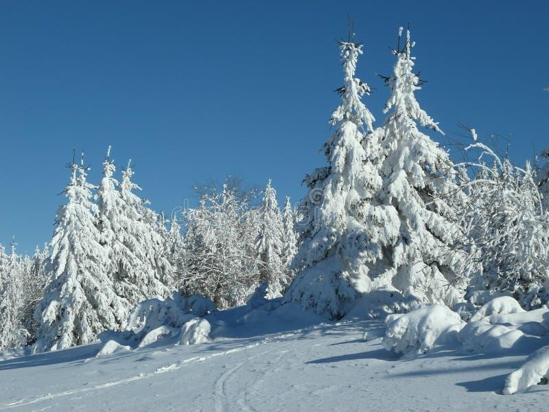 在KrkonoÅ ¡ e山的寒假手段 免版税库存图片