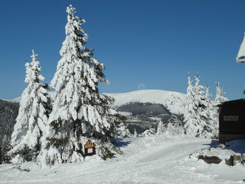 在KrkonoÅ ¡ e山的寒假手段 库存图片