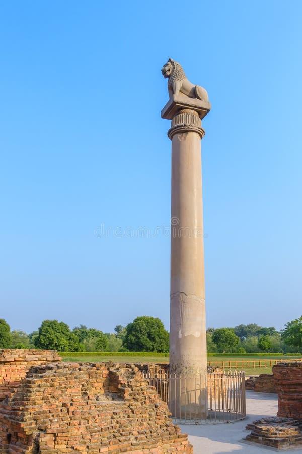 在Kutagarasala Vihara,毗舍离,比哈尔省,印度的Asokan柱子 免版税图库摄影