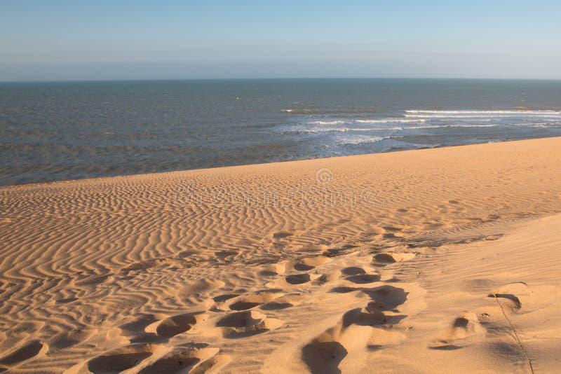 在La瓜希拉省的哥伦比亚的海岸线 免版税图库摄影