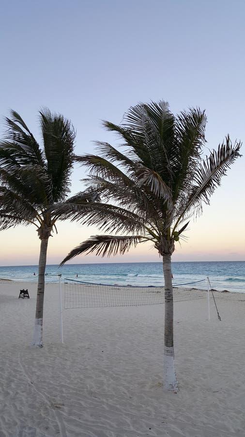 在La Isla Dorado海滩,墨西哥的坎昆夜 免版税库存照片