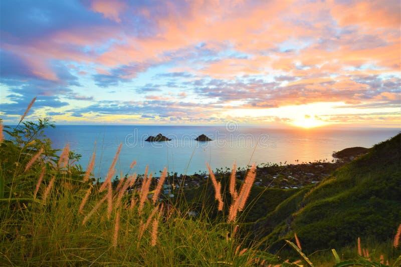 在Lanikai海滩,夏威夷的美好的日出 免版税图库摄影