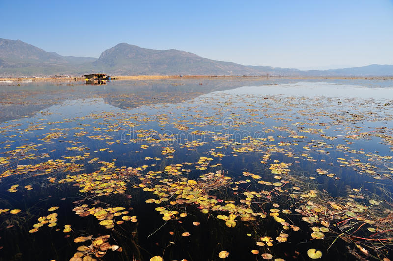 在LaShiHai湖 免版税库存图片