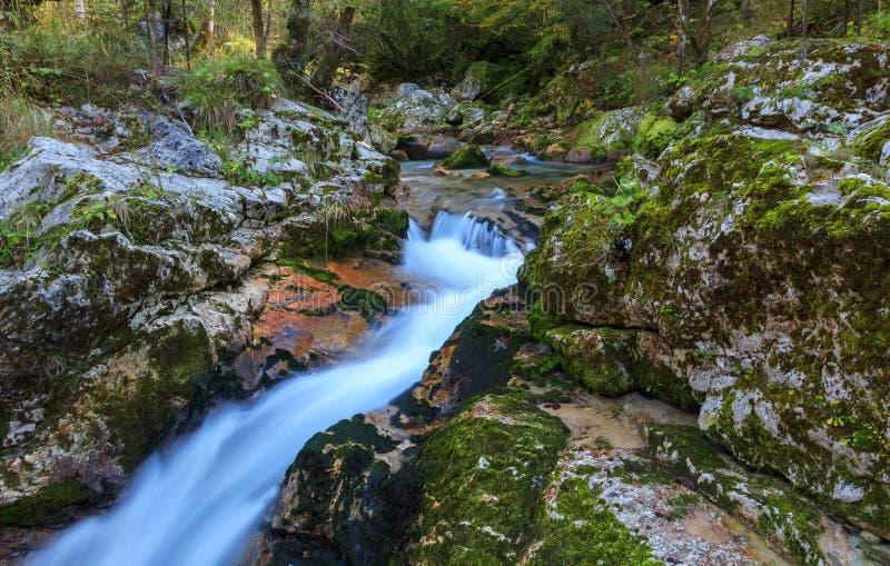 在Lepena谷的山小河 库存照片