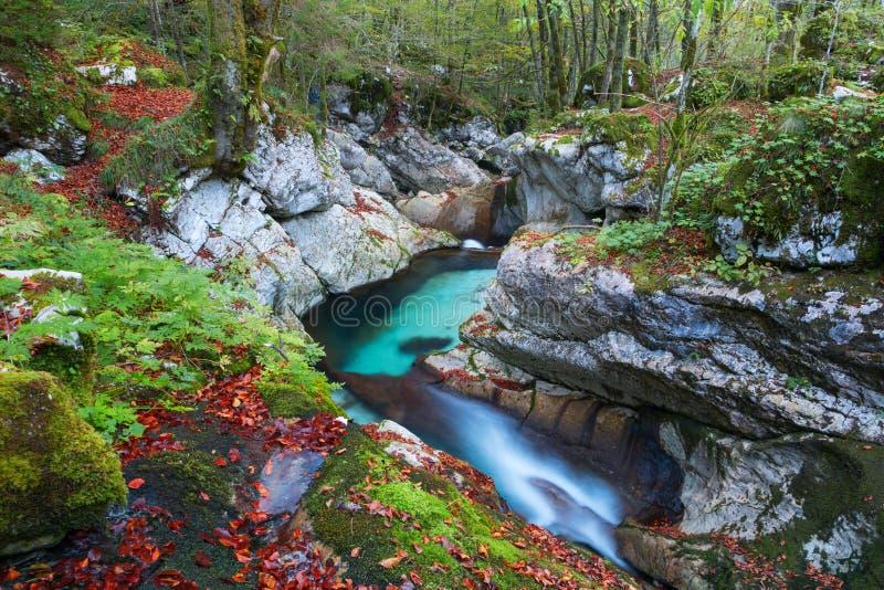 在Lepena谷的美丽的山小河秋天 图库摄影
