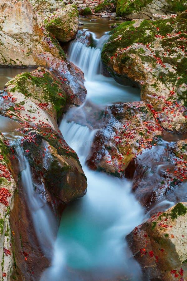 在Lepena谷的美丽的山小河秋天 免版税库存照片