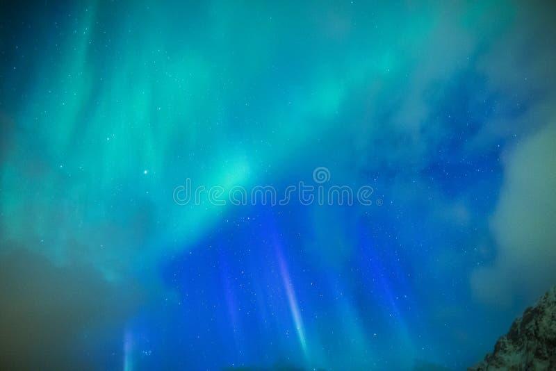 在Lofoten海岛的惊人的美丽如画的独特的北极光极光Borealis 库存图片