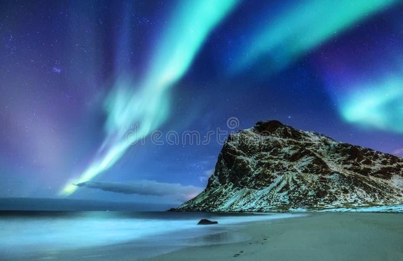 在Lofoten海岛,挪威上的极光borealis 在山和海洋岸上的绿色北极光 夜冬天风景与 库存图片