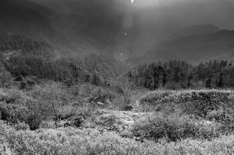 神雕乱lun_在lunhgthang,锡金,西孟加拉邦,印度的美好的黑白冷颤的冬天日出