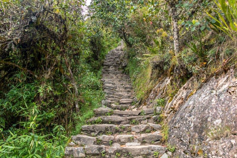 在Machu Piccu山陡坡的石步有在马丘比丘印加人城堡的看法 免版税库存图片