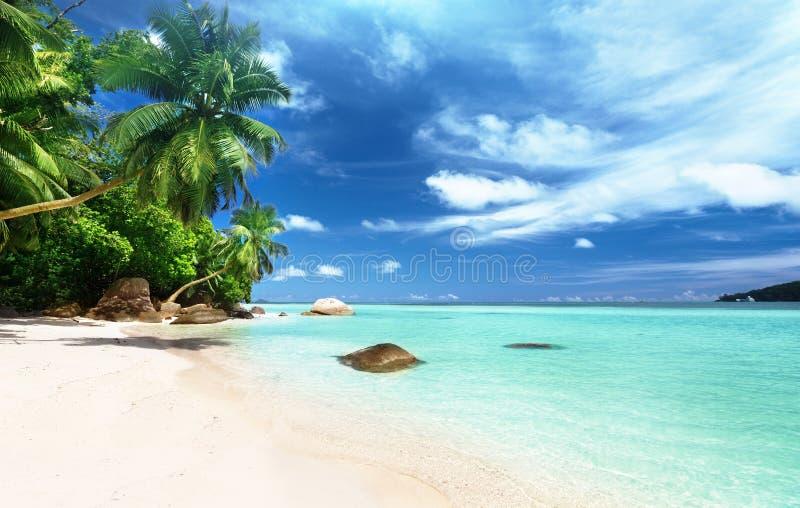 在Mahe海岛上的海滩 免版税图库摄影