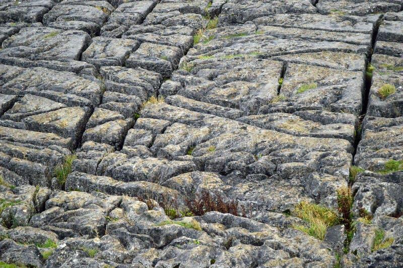 在malham小海湾约克夏英国上的石灰石路面 库存图片