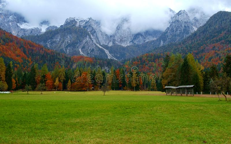 在Mangart山的脚的美好的秋天风景 库存照片