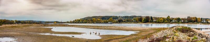 在Mehlem和Koenigswinter,德国,在莱茵河的最低水位-全景附近的河莱茵河 图库摄影