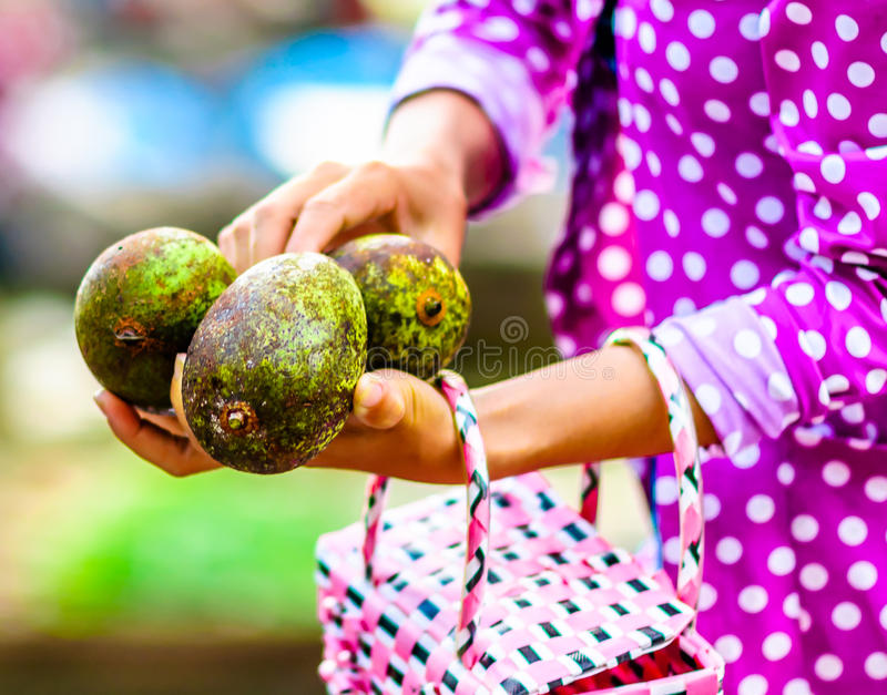 在Mekog市场上的妇女买的鲕梨在越南 免版税库存照片