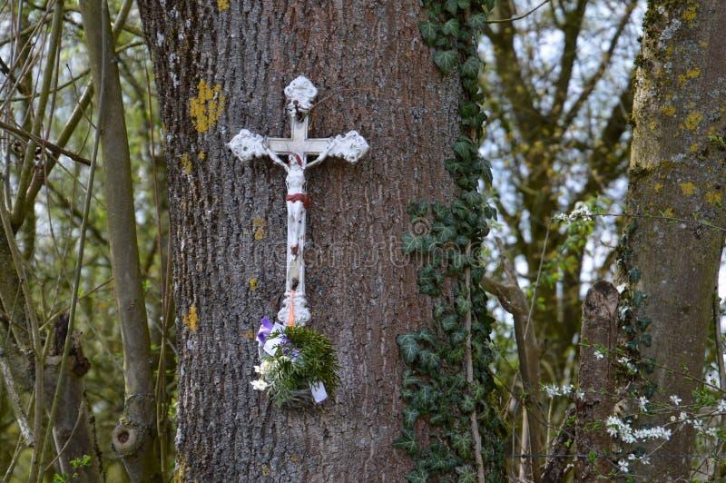 在memoriam,用花装饰的白色十字架垂悬在树 库存照片