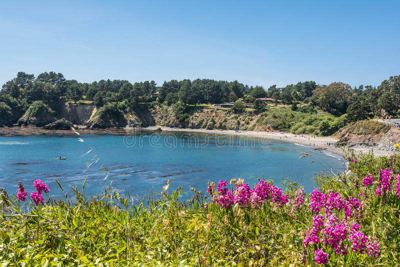 在Mendocino的海岸的一个海湾 库存图片