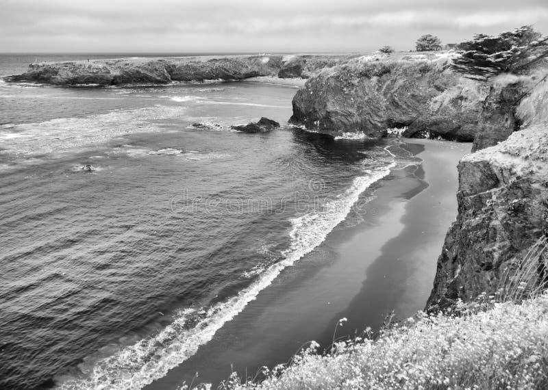 在Mendocino的海岸线 免版税库存照片