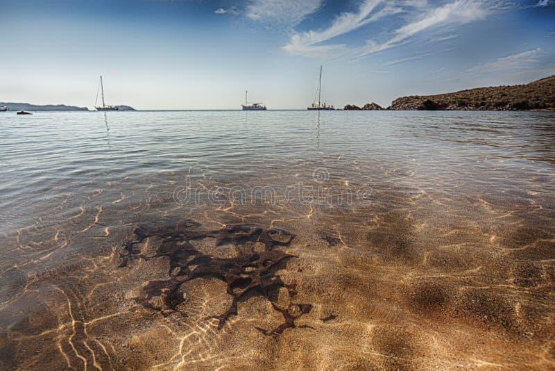 在menorca,巴利阿里群岛的美好的海岸风景 免版税库存照片