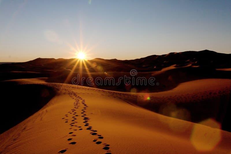 在Merzouga摩洛哥沙丘的日落  图库摄影