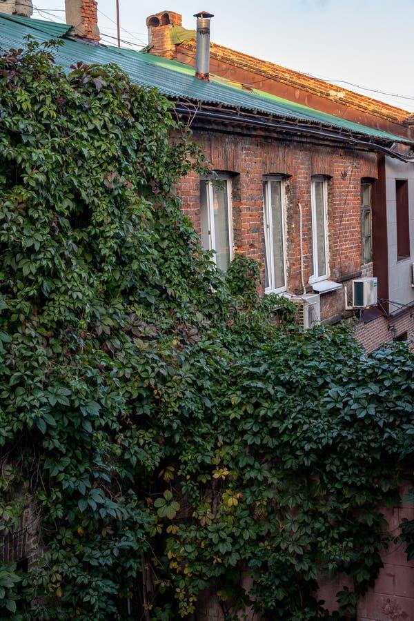 在Millionka最旧的市区的街道上的最旧的大厦  著名建筑地标 纪念碑远 库存照片