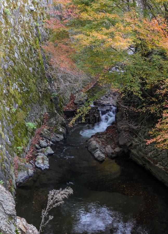 在Minoo或Minoh国家公园在秋天,大阪,亚帕的瀑布 库存照片