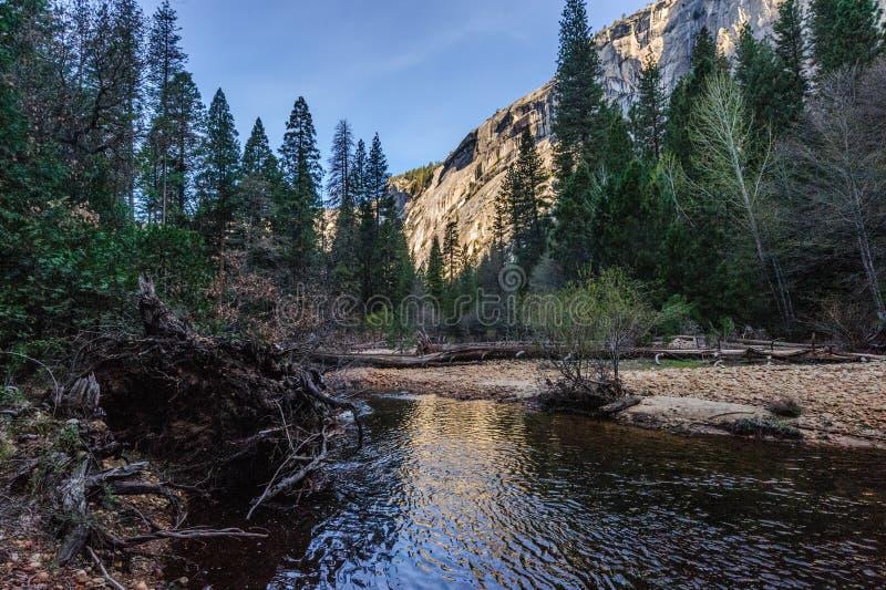 在Mirror湖,优胜美地国家公园的清早 免版税图库摄影